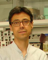 Felipe X. Pimentel