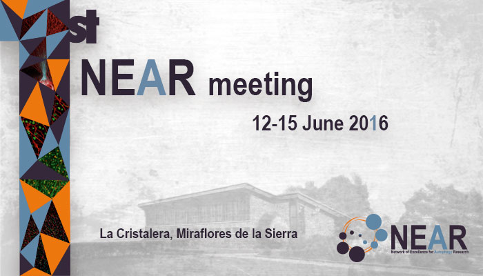 First NEAR meeting La Cristalera, Miraflores de la Sierra 12-15th June 2016