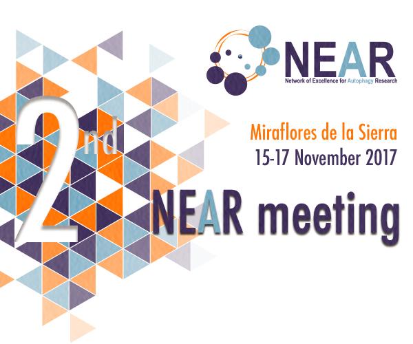 Second NEAR meeting