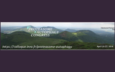 8th Proteasome & Autophagy Congress