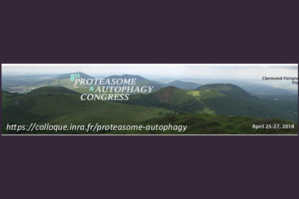 8th Proteasome & Autophagy Congress