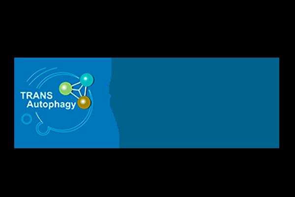 COST Transautophagy: Annual Meeting 2019