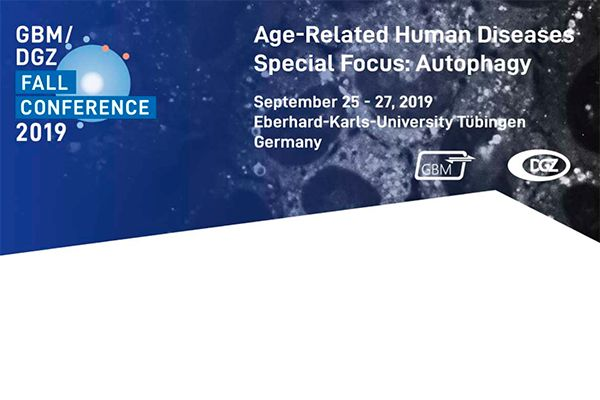 Age-related human diseases – Special focus Autophagy